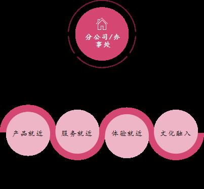 图2:洲明产业整合式战略举措